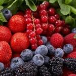 Petits fruits-2